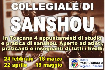 Collegiale Sanshou Toscana