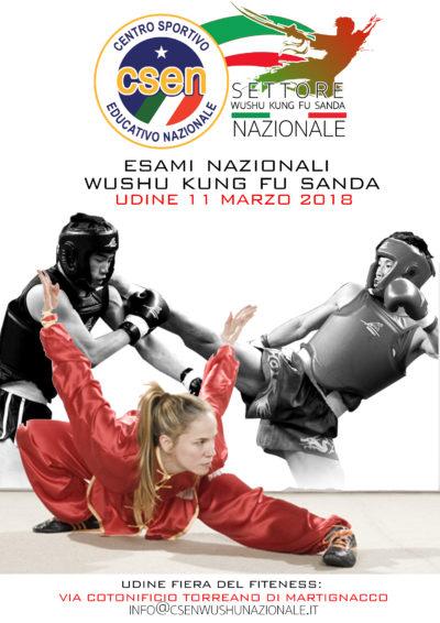 10marzo 2018 Esami Nazionali 1° – 5° Duan Udine 11 Marzo 2018